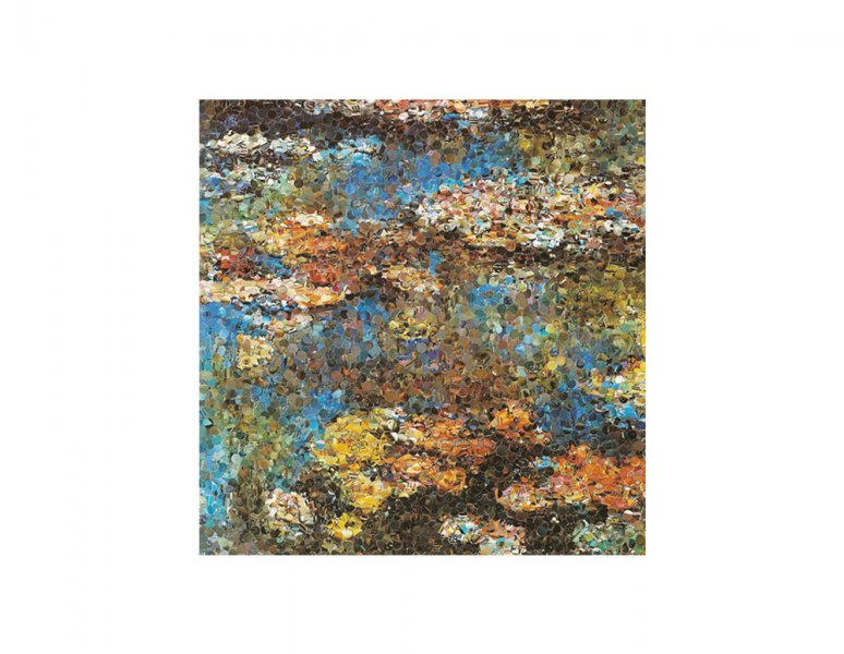 Vik Muniz - Water lilies, after Monet. (Pictures of magazines).